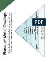 2 Phases of Motor Development Stu Notes