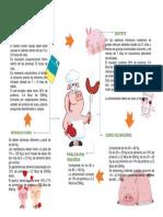 Alimentación cerdos.pdf