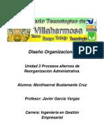 Diseño Organizacional Unidad 3