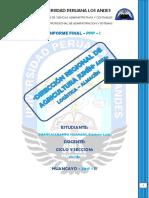 Informe Final Tefa Draj