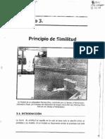 Principios de similitud.pdf