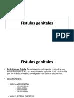 Fístulas genitales 2013