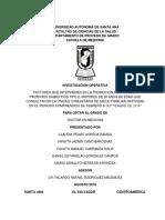 TRABAJO FINAL ANTES DE CORREGIR.docx