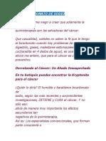 ELBICARBONATO DE SODIO