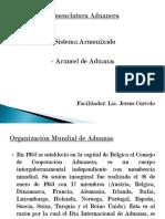 organizacinmundialdeaduanas-091116134439-phpapp01