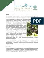 Reporte Botanica