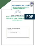 Análisis Carbon Activado