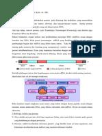 10 Protein Sintesis