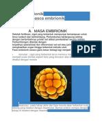 Masa Embrionik