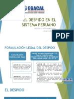 19-1-17 El Despido Sistema Peruano