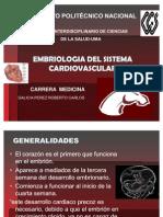 Embrio de Cardiovascular
