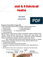 Anatomi & Histologi Mata