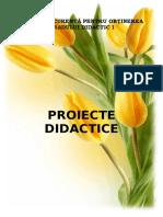 Proiect de lectie Sunetul z.doc