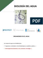 microbiologiadeaguasnegras