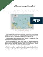 Stratigrafi Regional Cekungan Natuna Timur