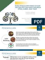 Proses Pengolahan Kakao di Pusat Penelitian Kopi dan Kakao Indonesia