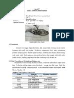 Patologi Ikan Insang Usus