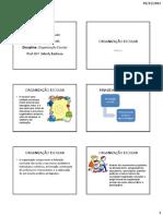 ORGANIZAÇÃO ESCOLAR.pdf