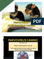 Parvovirus y Coronavirus