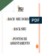 Bach shu