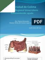 Gastroenteritis Delmy
