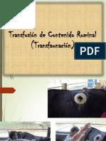 Transfaunación Ruminal