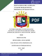 01 NAC 2017 PUNO Apaza_Quispe_Deysi_Pamela.pdf