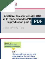 SME CPMod8 CPFinance French 3Apr06