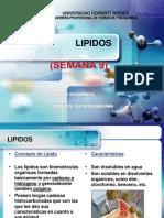 ff6458ef-2004-47e9-b110-d3c25d40f9ff