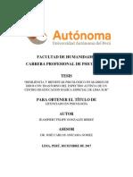 Tesis Resiliencia y Bienestar Psicologico - Edición Final