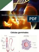 Genetica Del Desarrollo Huamano UPSJB 2017