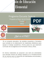 PACE-PES-07 y 08-10-15.pptx