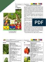 Guia Basica para la Agricultura Organica Urbana.pdf