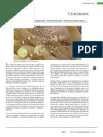 29 Crustaceos.pdf