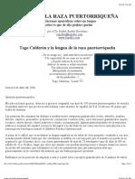 Tego Calderón y el Logos de la Raza Puertorriqueña (2004) ~ por el Dr. Rafael Andrés Escribano