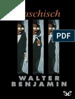 Benjamin Walter - Haschisch.epub