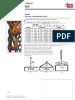 PIRMH_Rigging_Techniques_PI.pdf