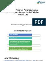 Integrasi Program Penanggulangan Anemia Rematri - Dit Promkes.pptx