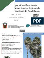 Manual Arbolado Ver1.5