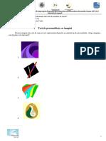 201506_vs_test_personalitate_eemi_eip_v2.1.pdf