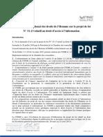 Avis Du Cndh Sur Le Projet de Loi Ndeg 31-13 Relatif Au Droit Dacces a Linformation