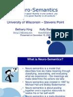Neuro Semantics