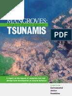 Tsunami Report
