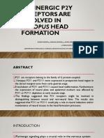 Biotech Journal