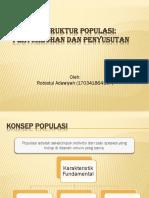 KONSEP STRUKTUR POPULASI