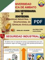 seguridadindustrialysaludocupacionaldegranjasavicolasanabelenchiflaycarinanuez-140821201825-phpapp01