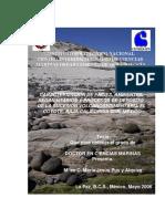 Caracterizacion de facies sedimentaria volcanosedimentaria