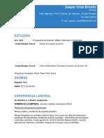 Curriculum Gaspar Urias Briceño