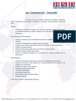 Job description - Directeur Commercial - Yaound�.pdf