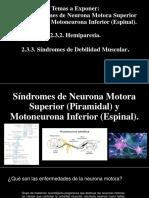 Síndromes de Neurona Motora Superior (Piramidal) y Motoneurona Inferior (Espinal). Hemiparesia. Síndromes de Debilidad Muscular